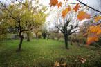 A vendre  Thionne | Réf 03007733 - Auvergne properties