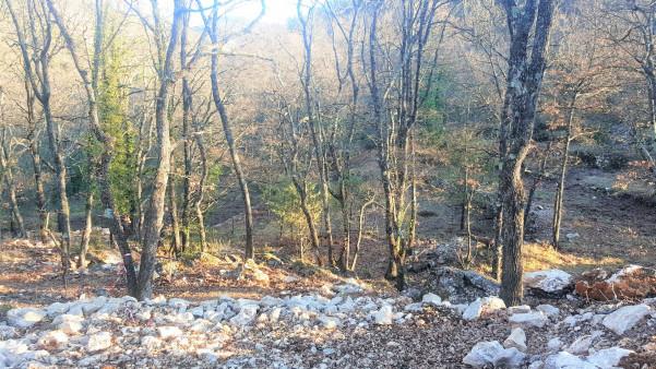 A vendre Chateauneuf Villevieille 06006761 Granit immobilier