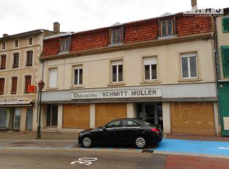 A vendre Bouzonville 0601112649 Portail immo