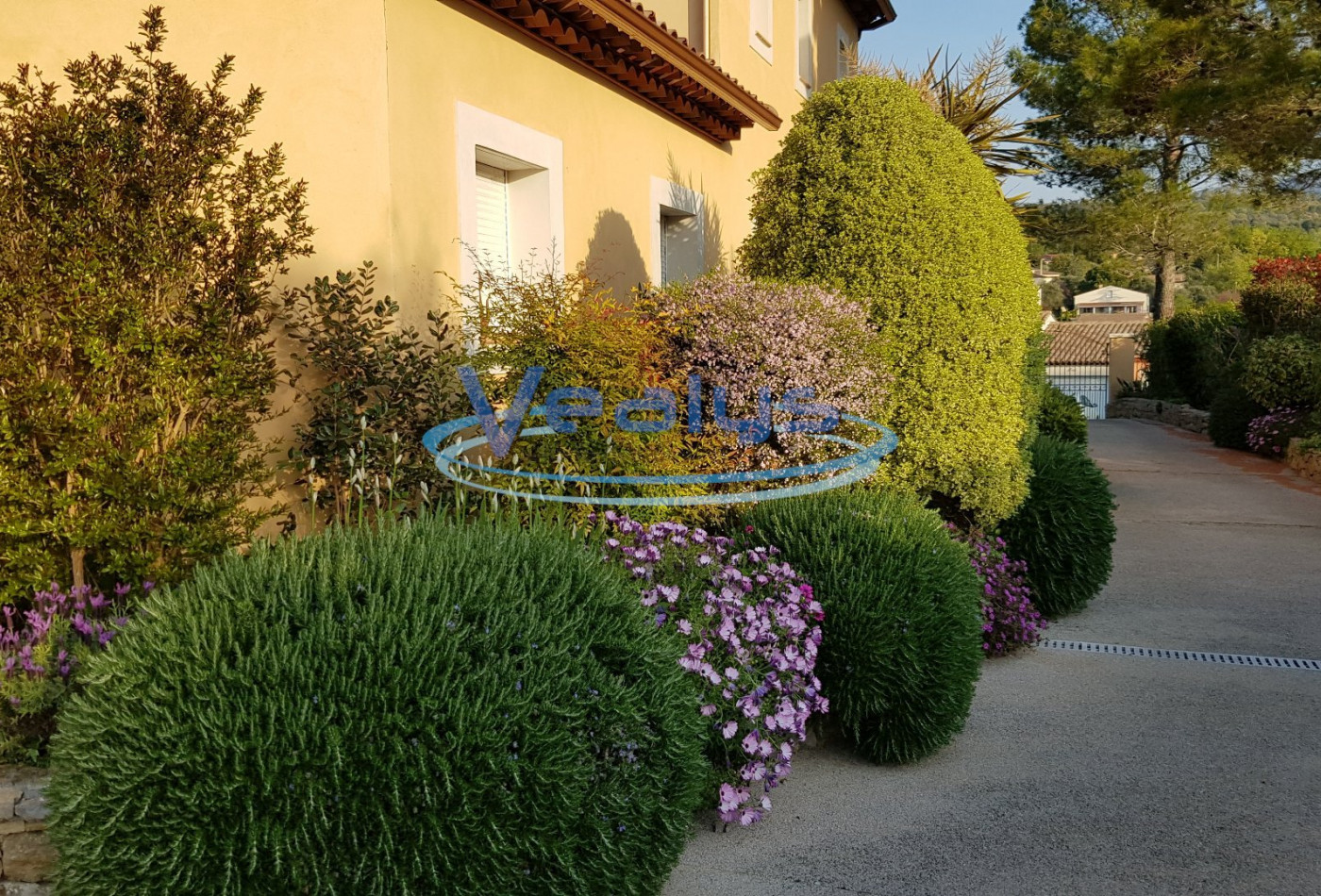A vendre Le Rouret 060201117 Vealys