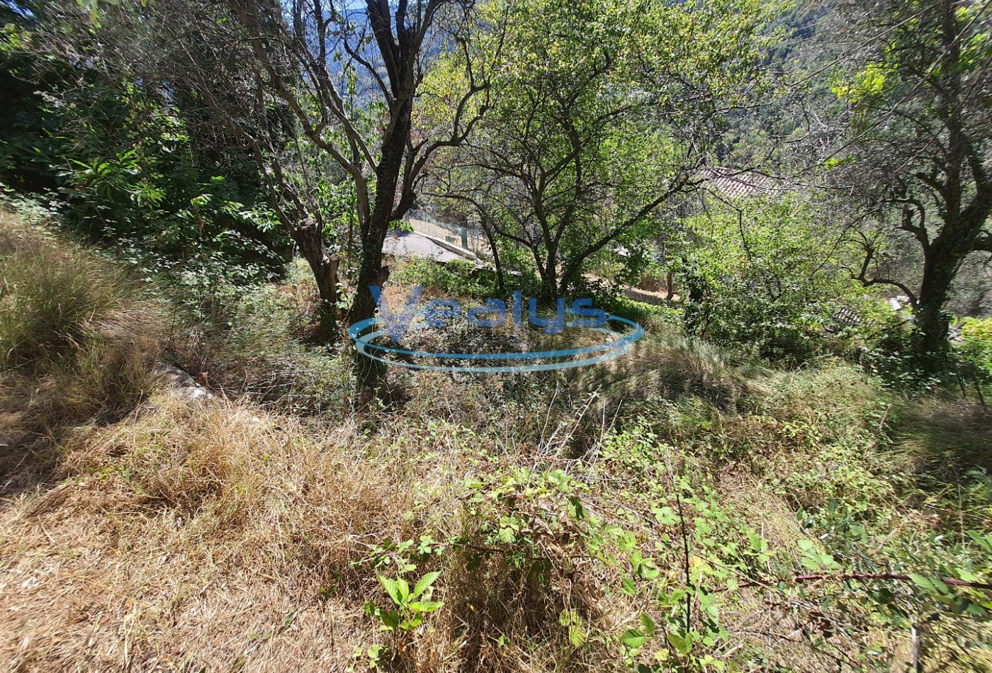 A vendre Coaraze 060201171 Vealys