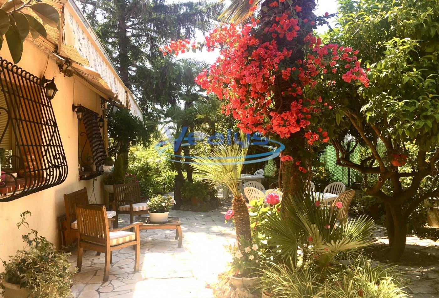 A vendre Nice 060201353 Vealys