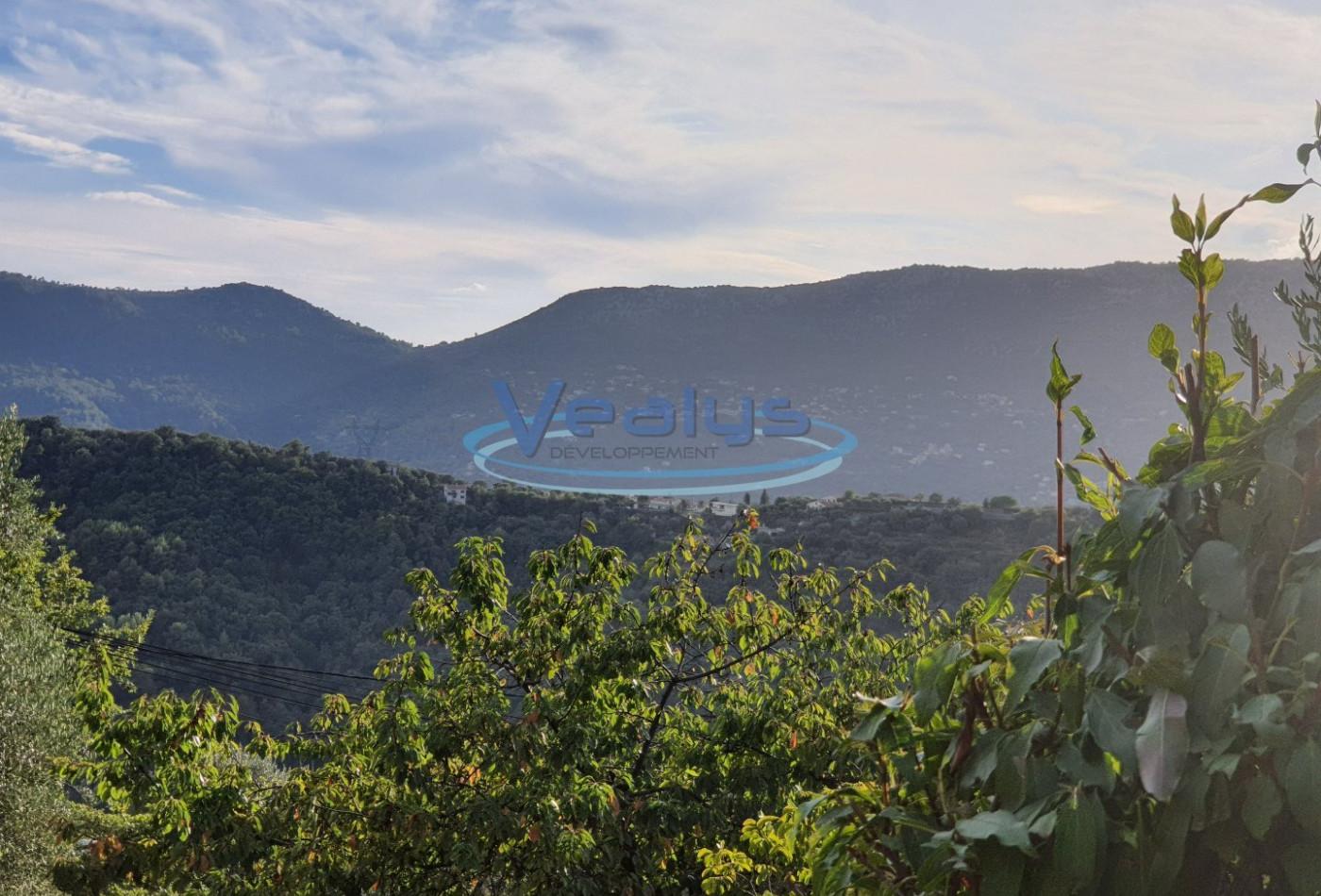 A vendre Berre Des Alpes 060201424 Vealys