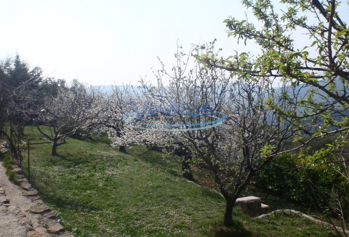 A vendre  Berre Des Alpes   Réf 060202247 - Vealys