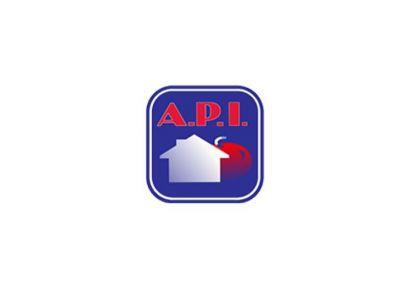 A vendre Saverdun 090049171 Agence api