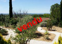 A vendre Paraza 110104226 L'@gence lezignan
