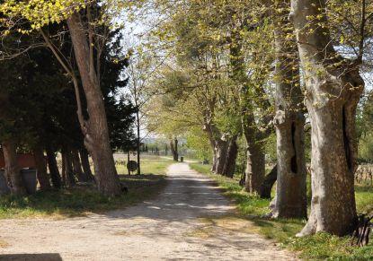 A vendre Propri�t� viticole Lezignan Corbieres | R�f 1101921788 - Lezimmo