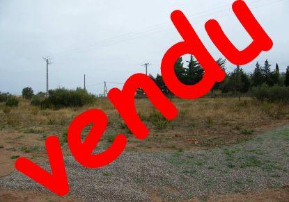 A vendre Saint Andre De Roquelongue 11019605 Lezimmo