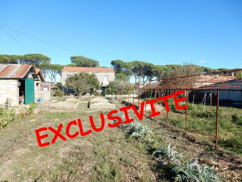 A vendre Salleles D'aude 110241138 Palausse immobilier