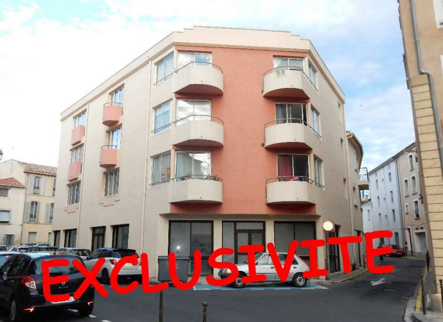 A vendre Narbonne 11024945 Palausse immobilier