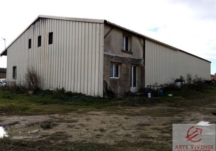 A vendre Lavalette 110301243 Arte vivendi