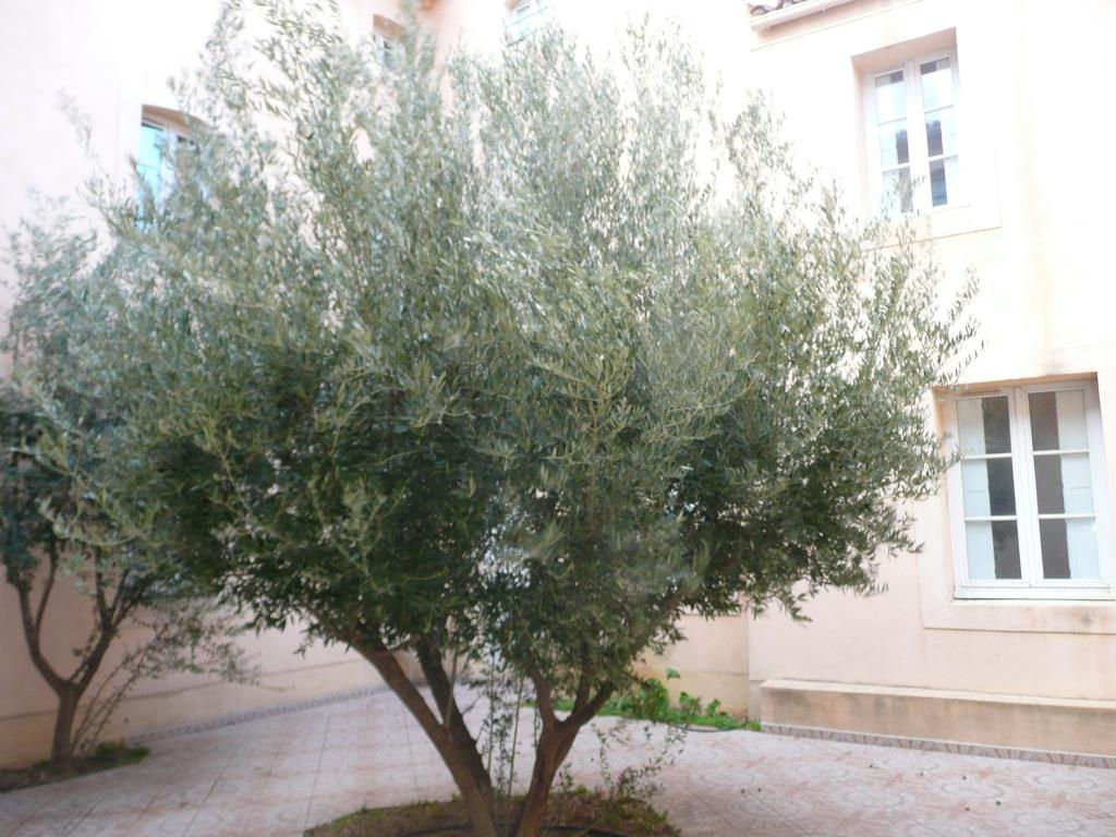 appartement-T3-narbonne,11-photo1