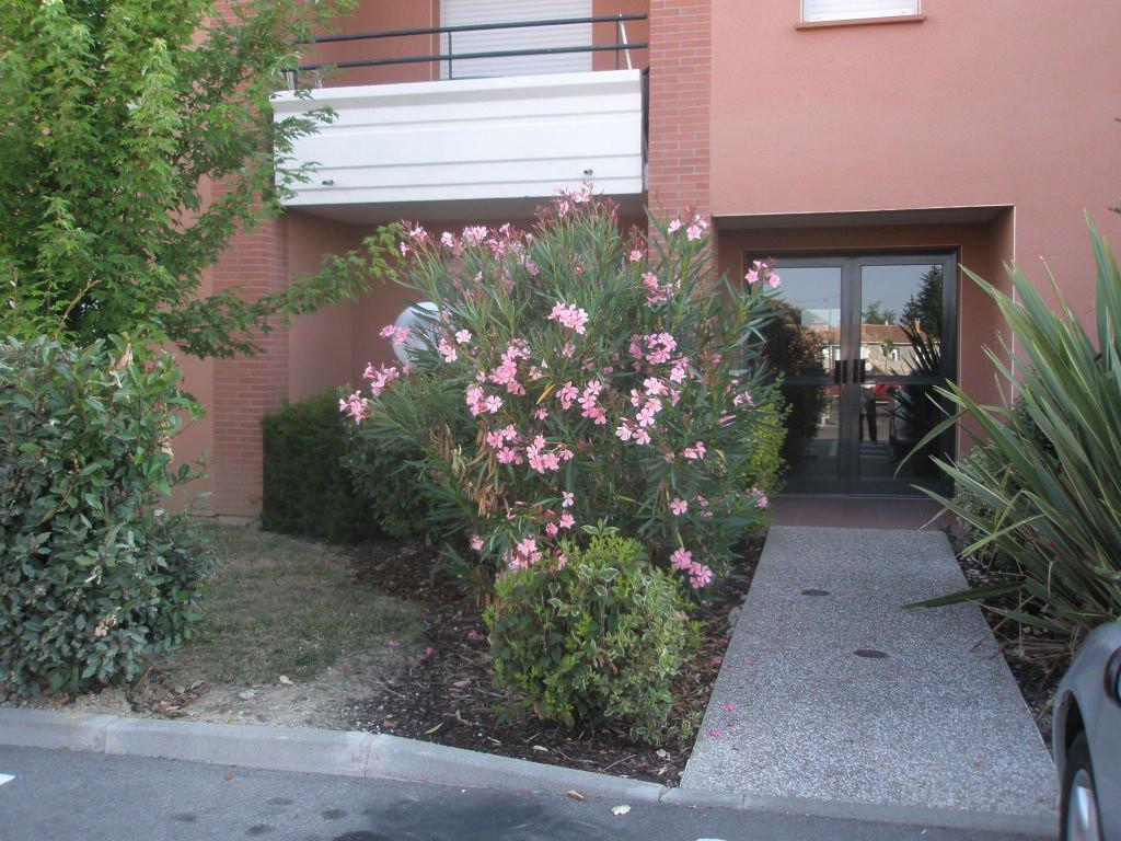 appartement-T3-montech,82-photo1