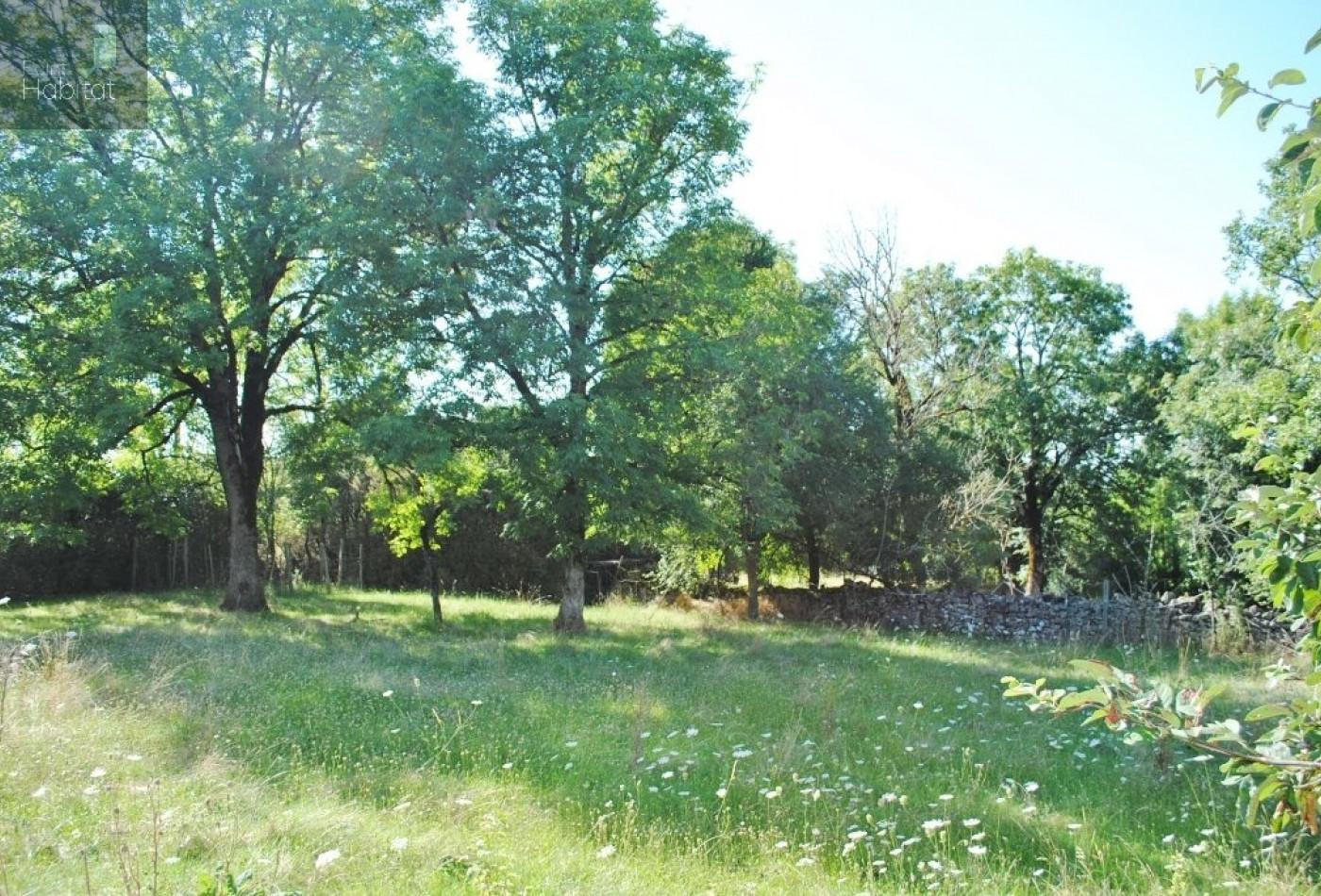 A vendre Villefranche De Rouergue 12005620 Point habitat