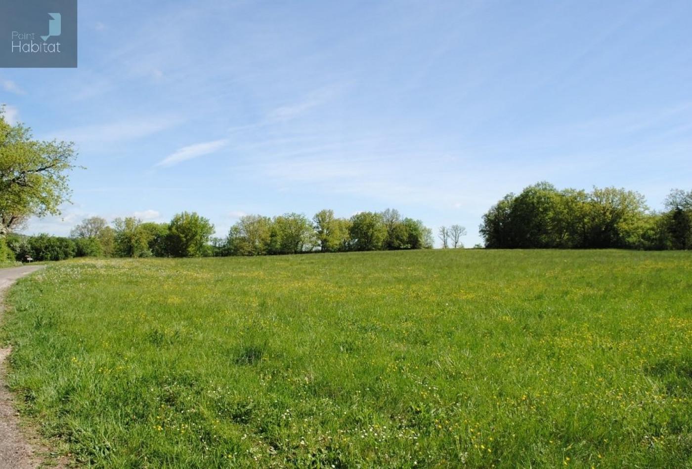 A vendre Villefranche De Rouergue 12005701 Point habitat