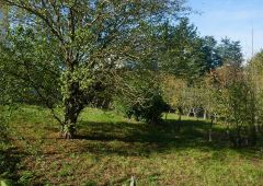 A vendre Rodez 1200818928 Selection immobilier