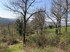 A vendre Florentin La Capelle 1200832100 Selection habitat