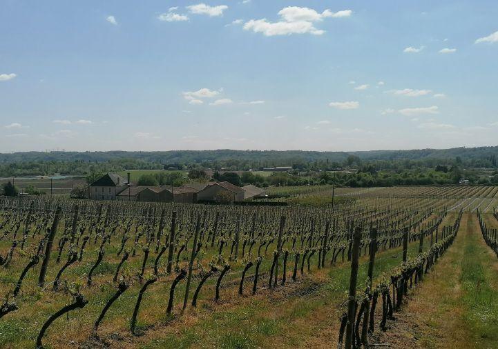 A vendre Propri�t� viticole Saint Antoine De Breuilh | R�f 1200927833 - Selection habitat