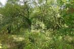 A vendre Boussac 1201018994 Selection habitat
