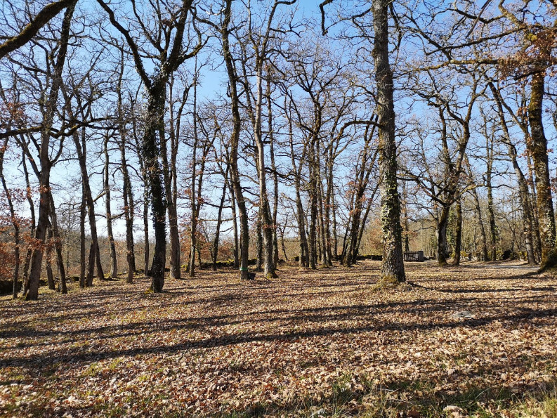 A vendre Caniac Du Causse 1201031918 Selection habitat
