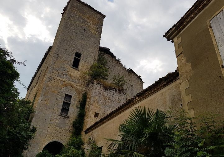 A vendre Château Valence Sur Baise | Réf 1201146712 - Selection habitat