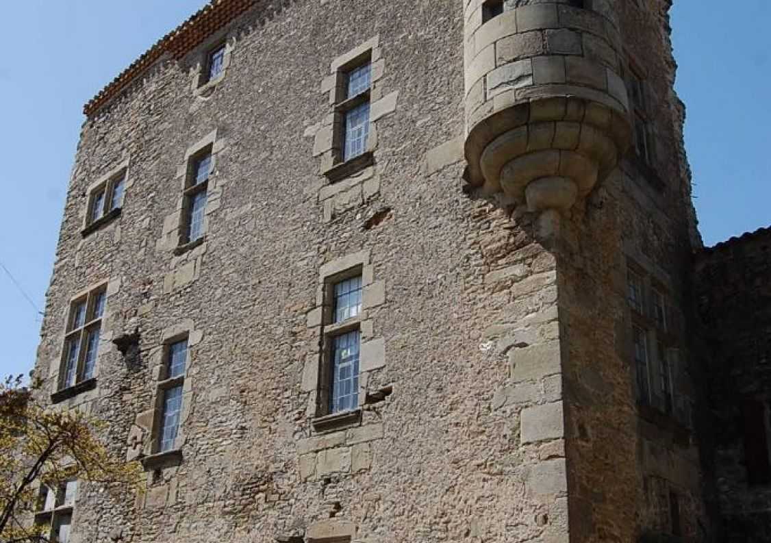 A vendre Château Peyriac Minervois | Réf 1200814006 - Hamilton