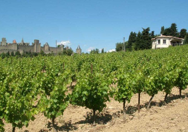 A vendre Carcassonne 1200814138 Selection habitat