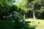 A vendre Mirepoix 1201216295 Selection habitat