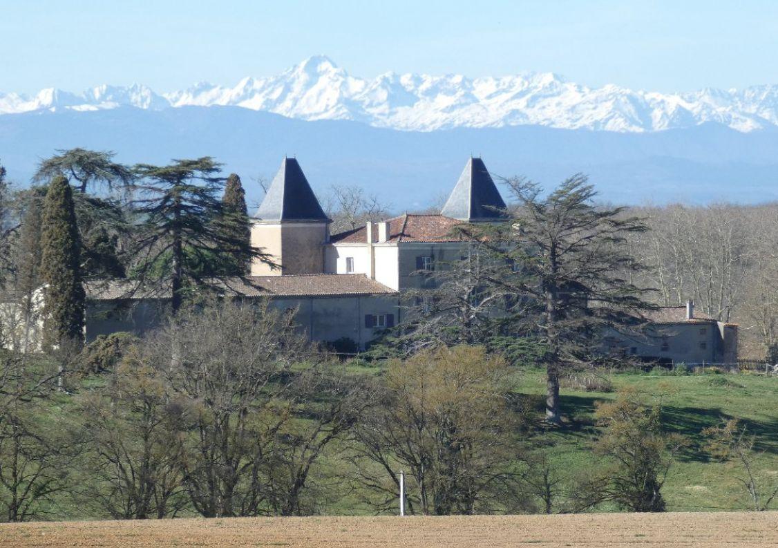 A vendre Château Pech Luna   Réf 1201245687 - Hamilton