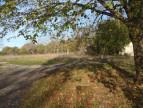 A vendre Nespouls 12013696 Selection habitat