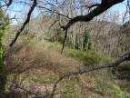 A vendre Saint Beauzely 1201418215 Selection habitat