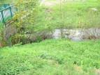 A vendre Pelouse 1201418461 Selection habitat