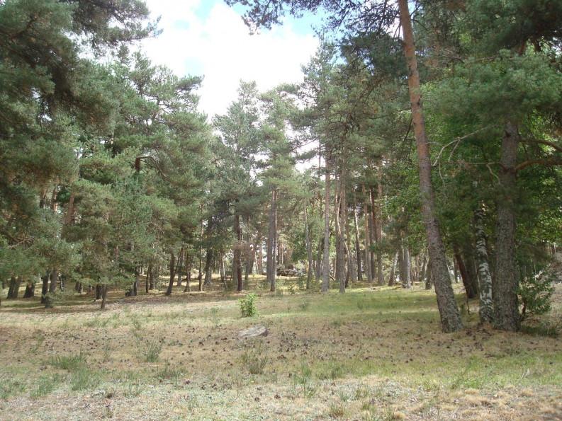 A vendre Javols 1201434278 Selection habitat