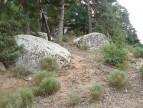 A vendre  Javols | Réf 1201434278 - Selection habitat