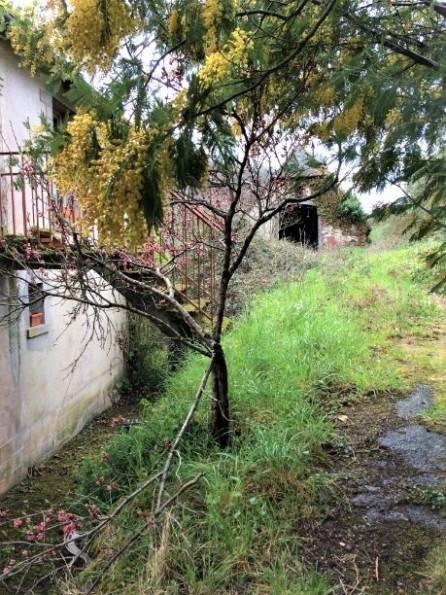 A vendre Vieillevie 1201542673 Selection habitat