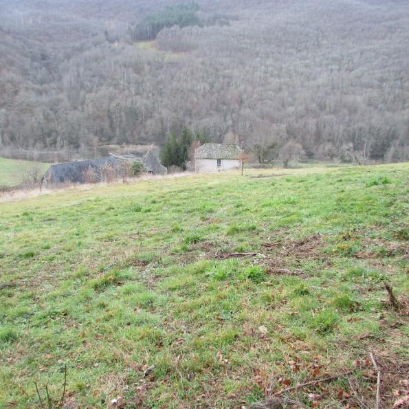 A vendre Vieillevie 1201542674 Selection habitat