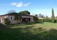 A vendre Albi 1201942701 Selection immobilier