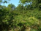 A vendre  Vailhourles | Réf 1202046346 - Selection habitat