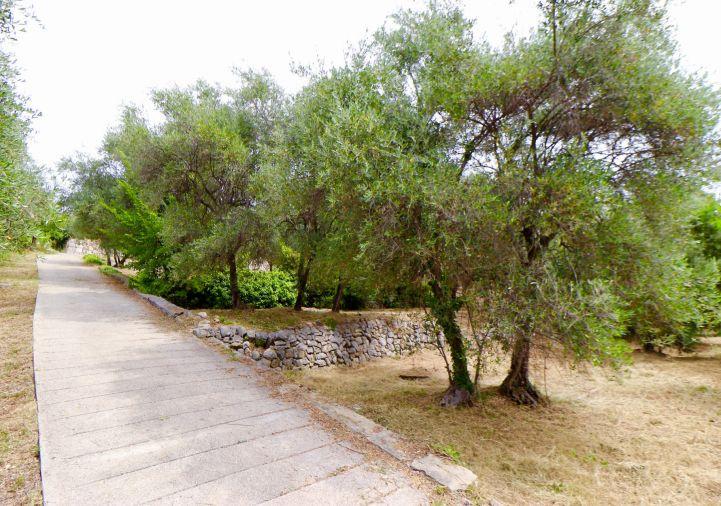 A vendre Terrain Grasse | Réf 1203046214 - Selection habitat