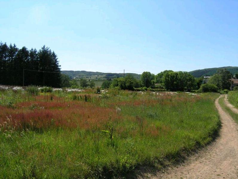 Vente terrain constructible moux en morvan 58230 4000m2 for Frais de notaire pour achat d un terrain non constructible