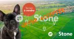 A vendre  Sombernon | Réf 210101612 - Lifestone grand paris