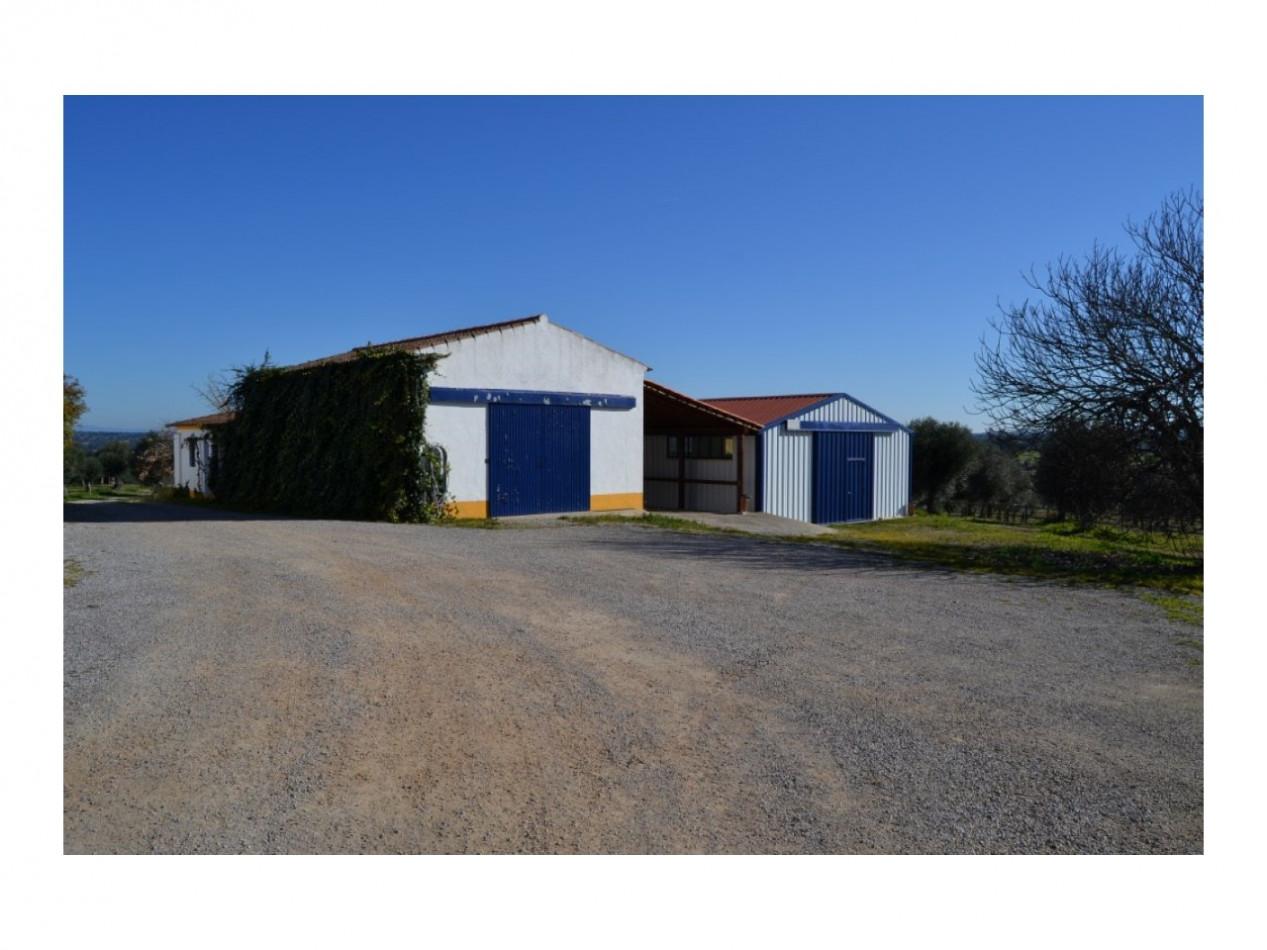 A vendre Ribeira De Nisa 2500581 Silver estate
