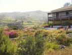 A vendre  Ribeira Da Vaca | Réf 2500617 - Convergences consulting