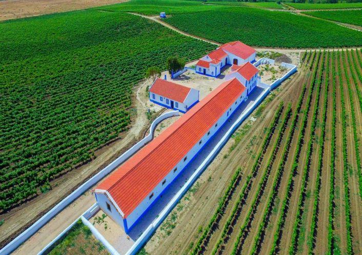 A vendre Propri�t� viticole Arruda Dos Vinhos | R�f 2500670 - Convergences consulting