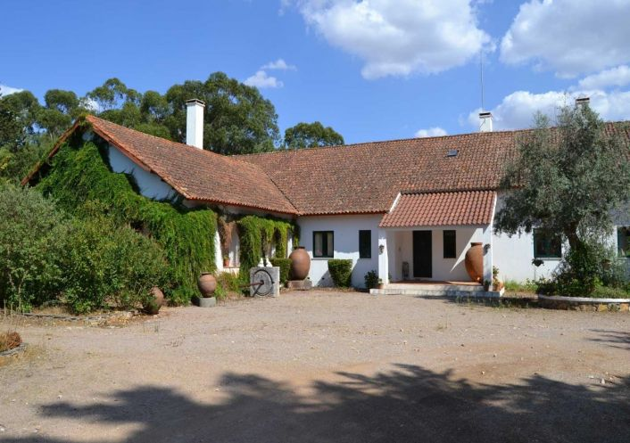 A vendre Domaine Sao Pedro | R�f 250067 - Convergences consulting