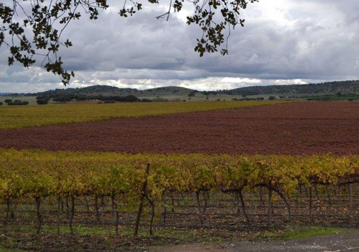 A vendre Terrain viticole Evora | R�f 250068 - Convergences consulting