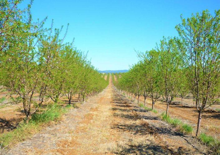 A vendre Propri�t� agricole Pedrogao | R�f 250069 - Convergences consulting