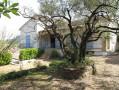 A vendre Saint Ambroix  300071047 Agence vigne