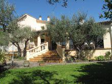 A vendre Saint Ambroix 300071133 Agence vigne