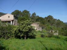 A vendre Saint Florent Sur Auzonnet 300071144 Agence vigne